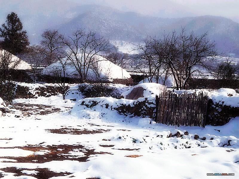 专题摄影 之下雪的天空壁纸图片 第25张
