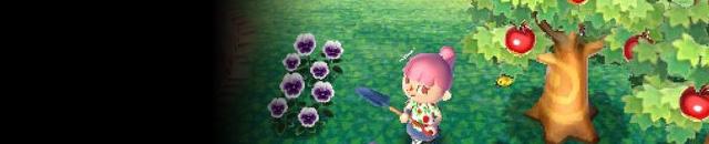3DS动物之森