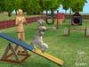模拟人生:宠物物语