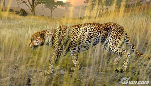 非洲狩猎 游戏图片